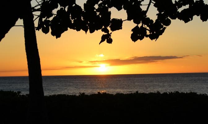 Oahu 6/22/2012